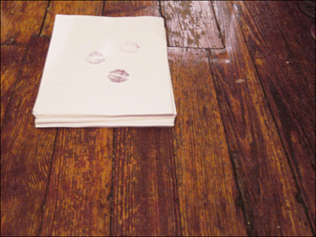 my kissed novel-in-progress, new chapters freshly printed