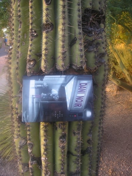 DANI NOIR in a saguaro in Arizona! Photo by my college friend Monica Friedman