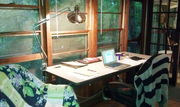 (Here's the desk I liked to write on—there were actually two desks in the studio, but this was the one I liked best. I should mention that I don't usually write with my last novel nearby—that's weird. It's only there because I was preparing for a reading at Malaprop's... and I didn't even end of reading at the event anyway!)