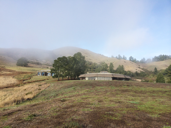 03 djerassi the fog clears