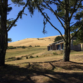 What to Expect at the Djerassi YA Novel Workshop