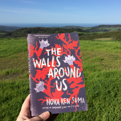 The Unstuck Story of THE WALLS AROUNDUS